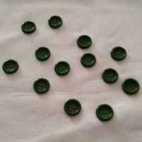 bt113p bottoni verde pz 13
